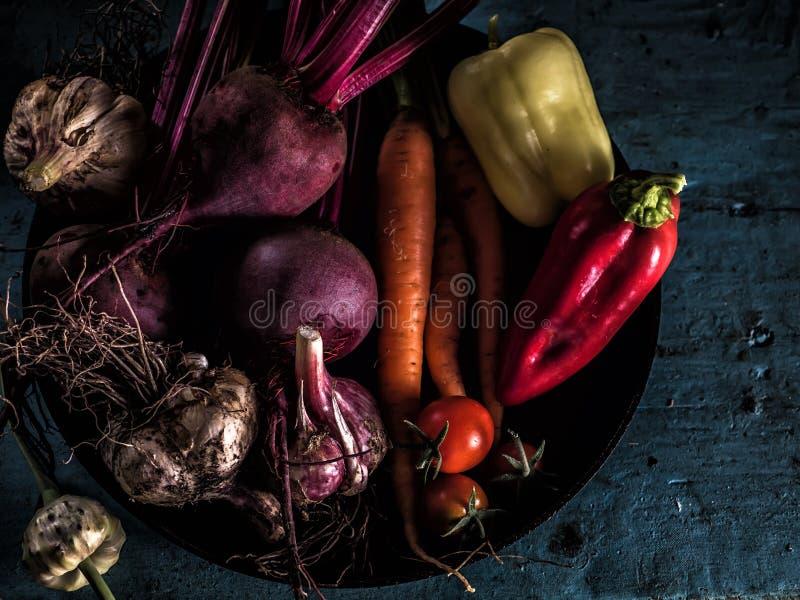 Cibo sano del raccolto fresco del borscht degli ingredienti delle verdure immagini stock libere da diritti