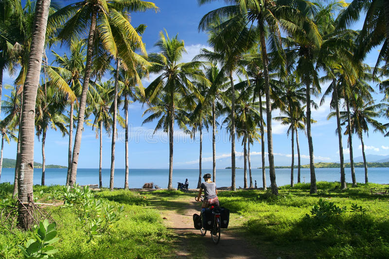 Ciclando nei tropici fotografie stock libere da diritti