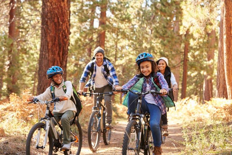 Ciclismo afro-americano da família através da floresta da queda imagem de stock royalty free