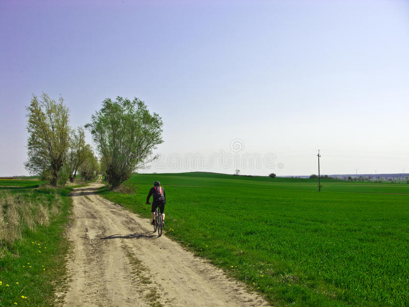 Ciclismo da mola fotos de stock