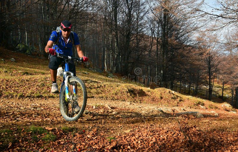 Ciclismo di montagna fotografie stock