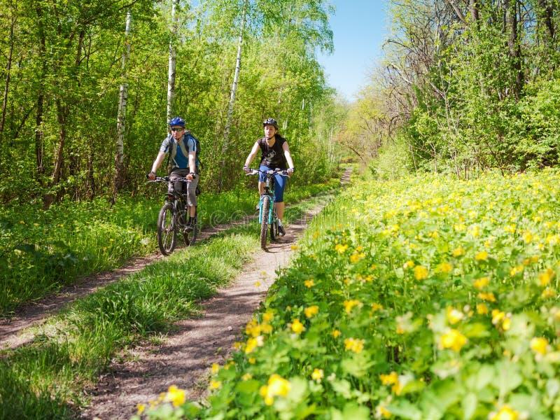 Ciclismo dos pares na mola fotos de stock