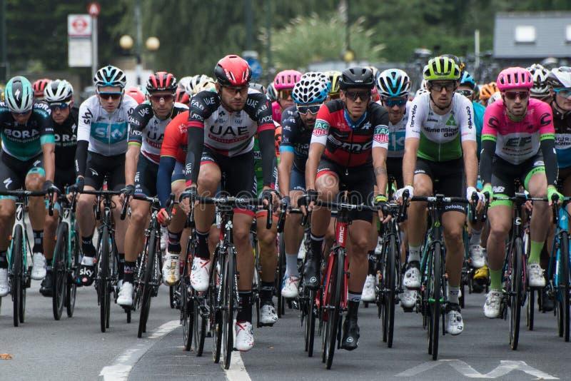 Ciclismo en ruta de RideLondon en Surrey imágenes de archivo libres de regalías