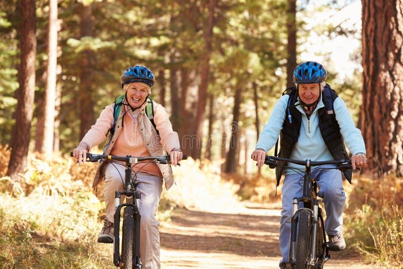 Ciclismo superior dos pares na fuga da floresta, Big Bear, Califórnia fotografia de stock