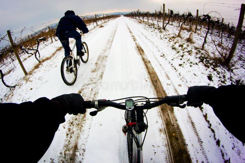 Ciclista fotos de archivo libres de regalías