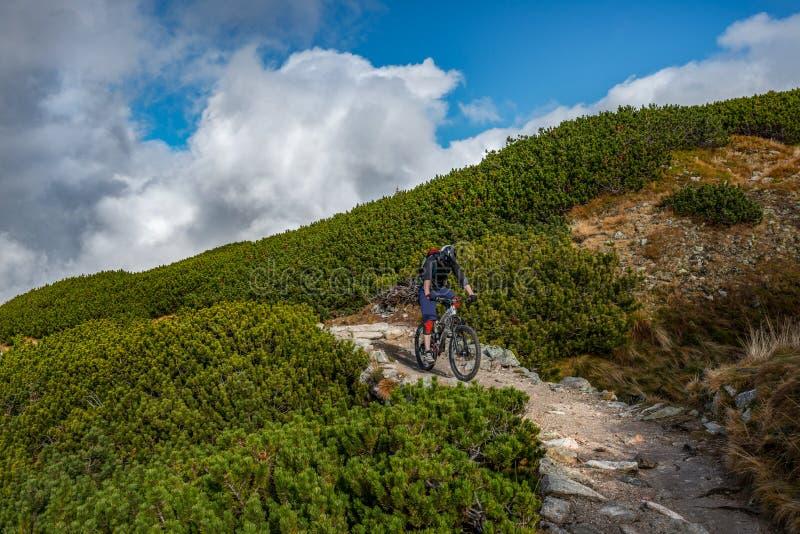Ciclista da montanha só na fuga rochosa alta nas montanhas Kasprowy Wierch, montanhas de Tatra, Polônia fotografia de stock royalty free