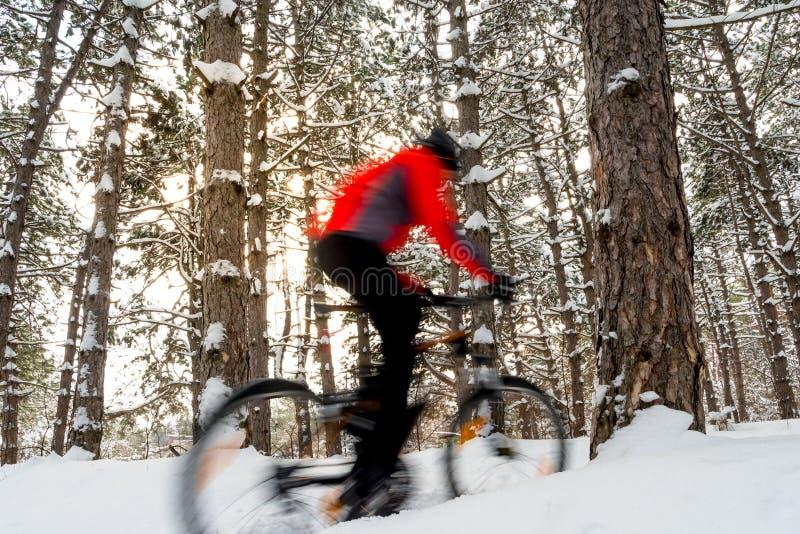Ciclista en bici de montaña roja del montar a caballo en el invierno hermoso Forest Photo con la falta de definición de movimient imagen de archivo libre de regalías
