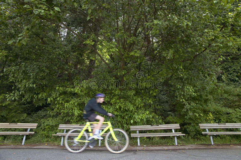 Ciclista en Stanley Park Vancouver canadá fotos de archivo