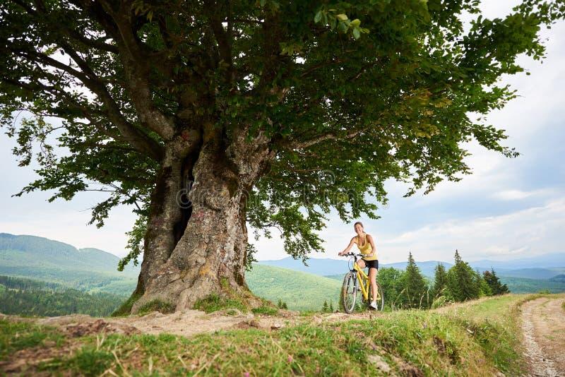 Ciclista fêmea atrativo com a bicicleta amarela da montanha, apreciando o dia ensolarado nas montanhas fotos de stock