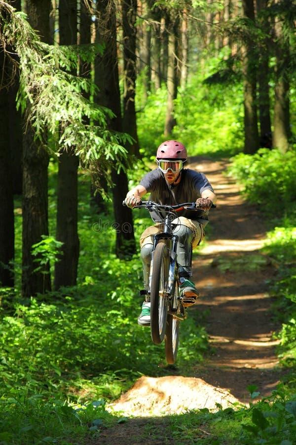 Ciclista in foresta fotografia stock