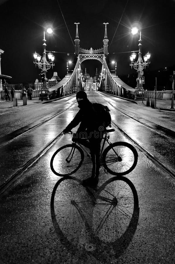 Ciclista na frente de Liberty Bridge de Budapest fotografia de stock