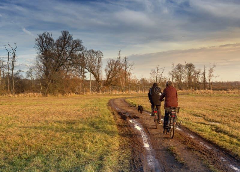 Ciclista no outono em uma estrada de terra pequena imagens de stock royalty free