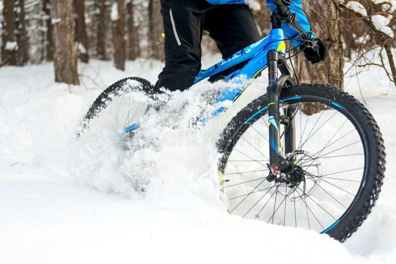 Ciclista que deriva en la bici de montaña en el invierno hermoso Forest Extreme Sport y el concepto Biking de Enduro foto de archivo libre de regalías
