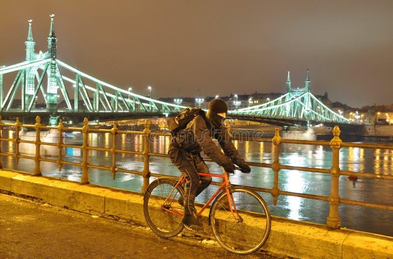 Ciclista que move-se ao lado do rio Danúbio fotografia de stock royalty free
