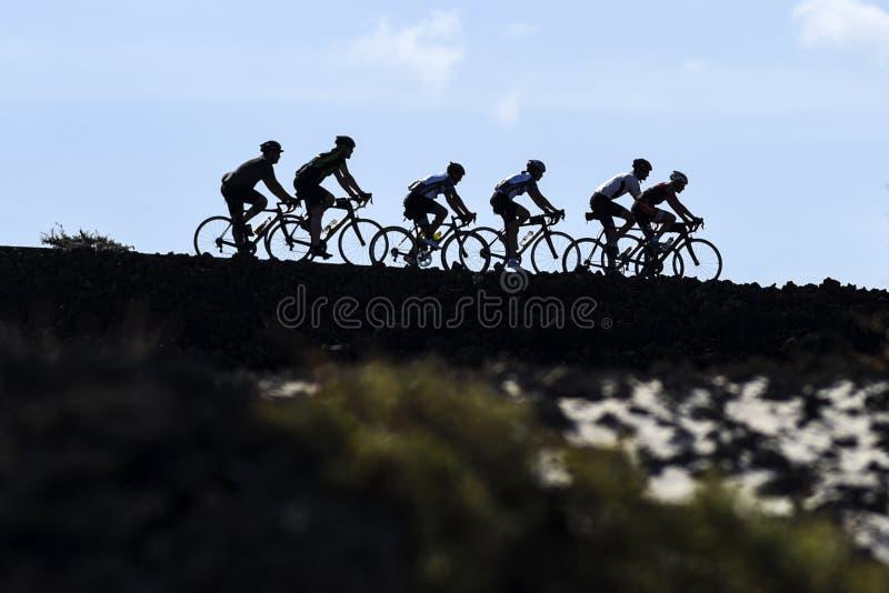 Ciclistas no peloton na estrada a Lanzarote, Ilhas Canárias fotografia de stock royalty free