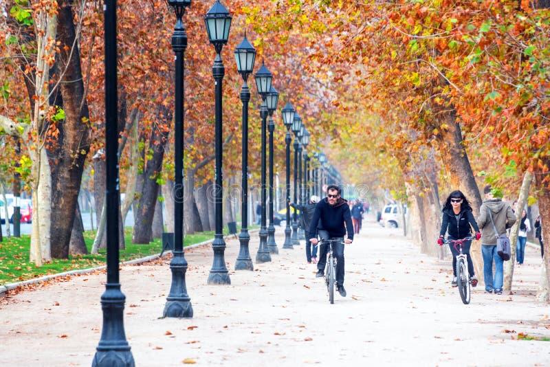 Ciclistas no Santiago, o Chile fotografia de stock