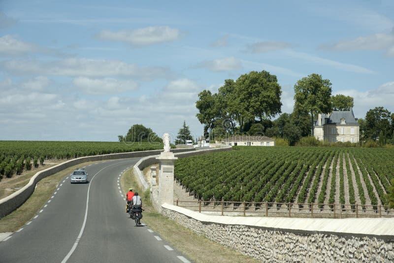 Ciclistas que visitam vinhedos em Pauillac França fotos de stock royalty free