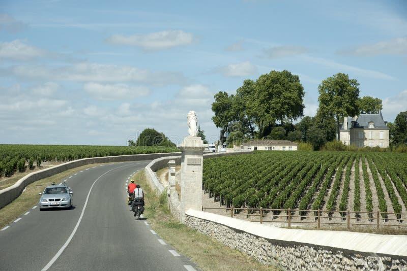 Ciclistas que visitam vinhedos em Pauillac França foto de stock royalty free