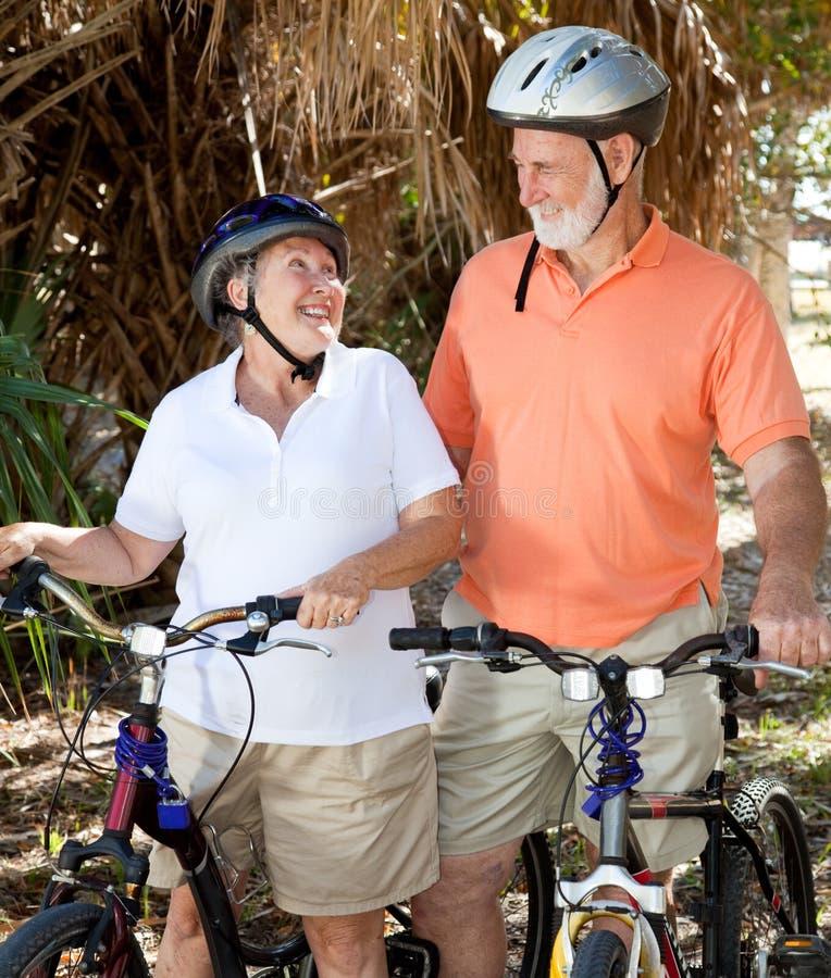 Ciclistas sênior no amor imagem de stock royalty free