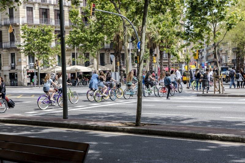 Ciclisti che attraversano attraversamento a Barcellona fotografia stock libera da diritti