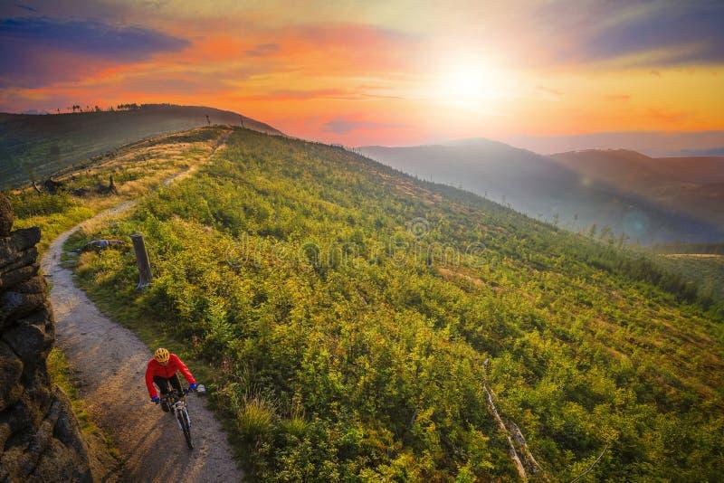 Ciclo biking de la montaña en la puesta del sol en el lan del bosque de las montañas del verano fotos de archivo libres de regalías