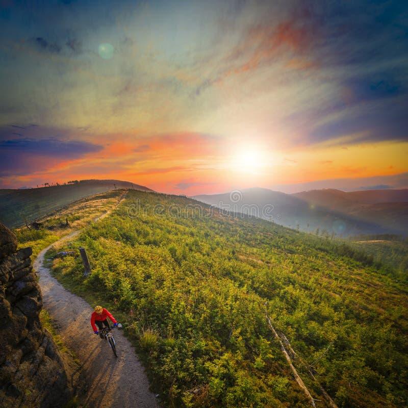 Ciclo biking de la montaña en la puesta del sol en el lan del bosque de las montañas del verano imágenes de archivo libres de regalías