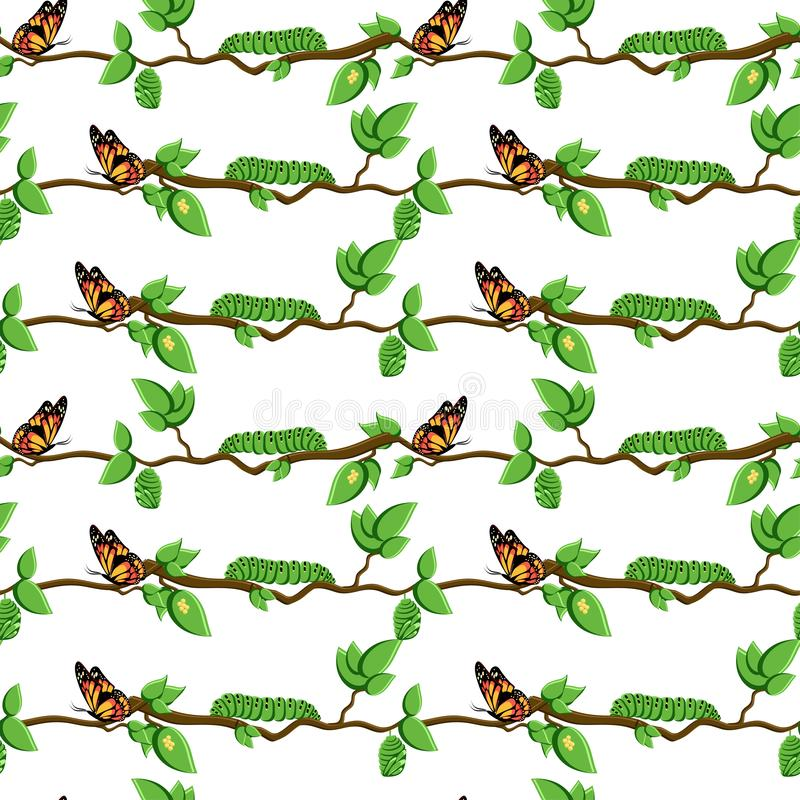 Ciclo de vida da borboleta, teste padrão sem emenda da metamorfose ilustração stock