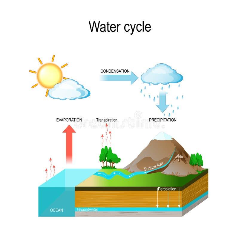 Ciclo dell'acqua illustrazione di vettore con e sollievo geologico illustrazione di stock