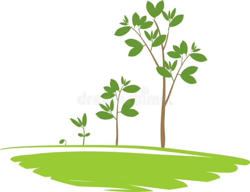 Ciclo di vita di un albero royalty illustrazione gratis