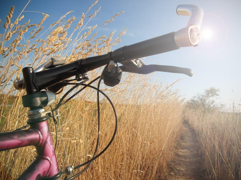 Ciclo en día soleado en la laguna de Venecia fotografía de archivo libre de regalías