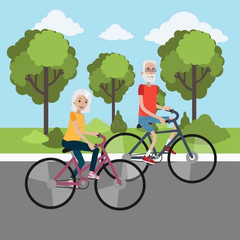 Ciclo mayor de los pares stock de ilustración