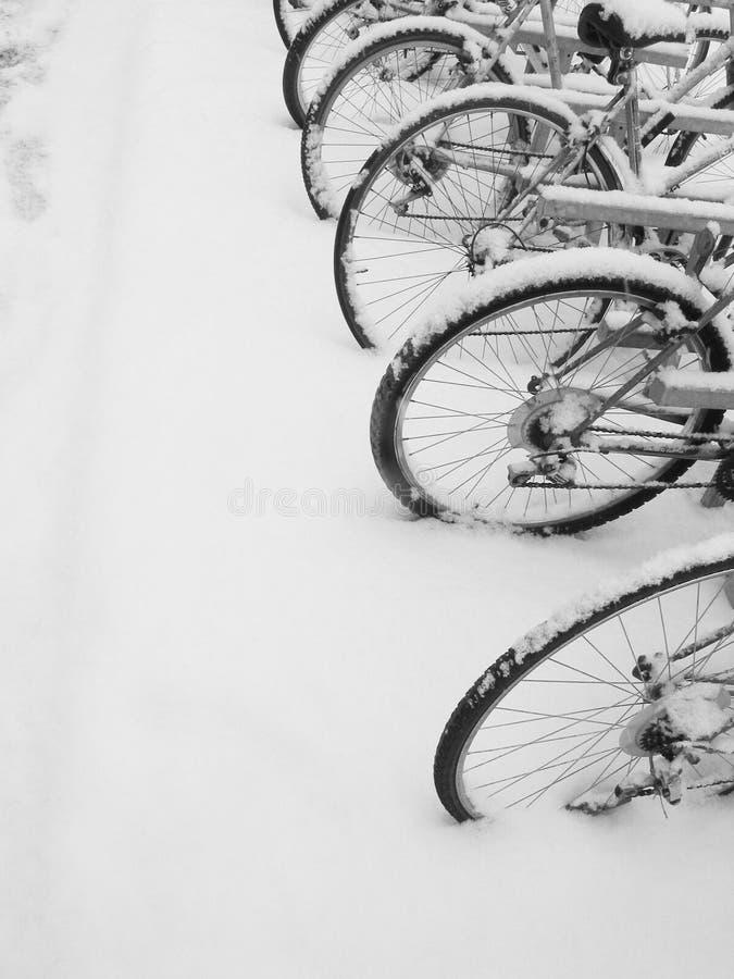 Ciclos Foto de archivo libre de regalías