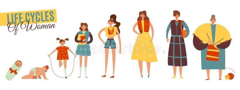 Ciclos de vida do grupo da mulher ilustração do vetor