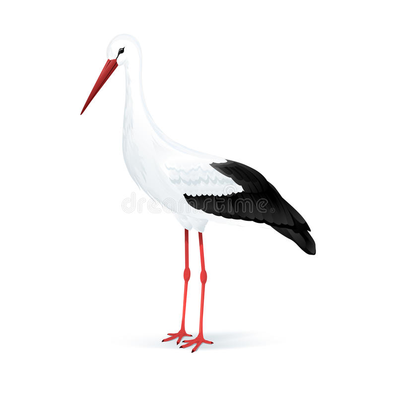 Cicogna bianca royalty illustrazione gratis