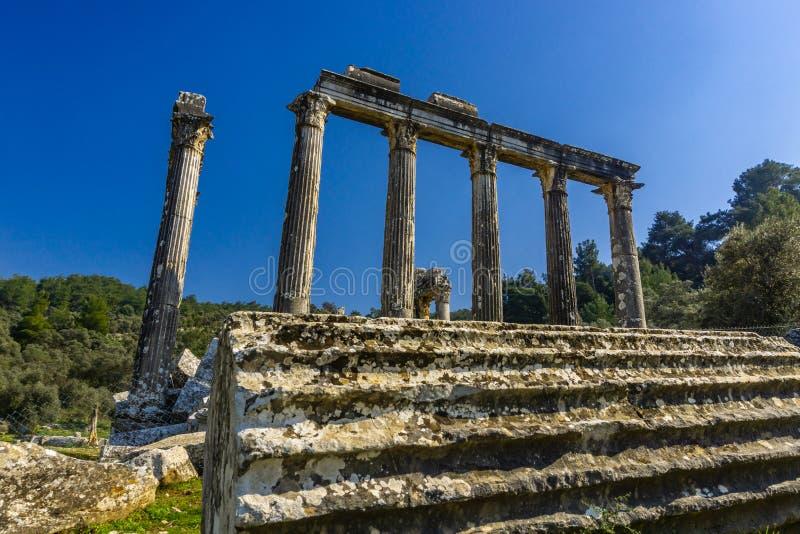 Cidade antiga de Euromos O templo de Zeus Lepsinos Lepsynos foi construído no século II Milas, Mugla, Turquia imagem de stock royalty free