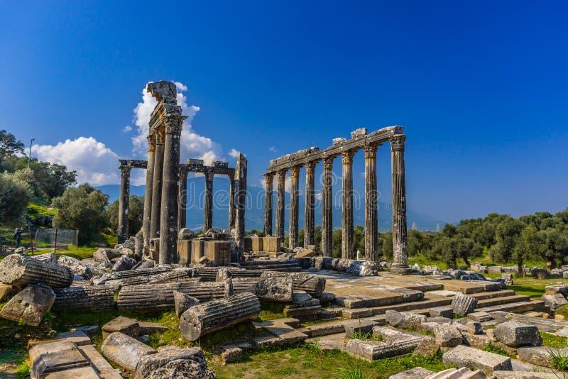 Cidade antiga de Euromos O templo de Zeus Lepsinos Lepsynos foi constru?do no s?culo II Milas, Mugla, Turquia foto de stock
