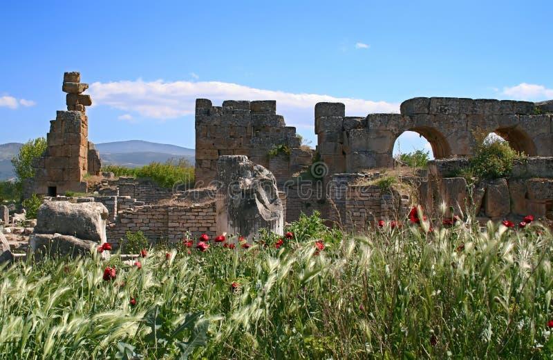 Cidade antiga dos Aphrodisias imagem de stock royalty free