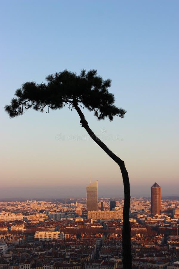 A cidade bonita de Lyon fotografia de stock