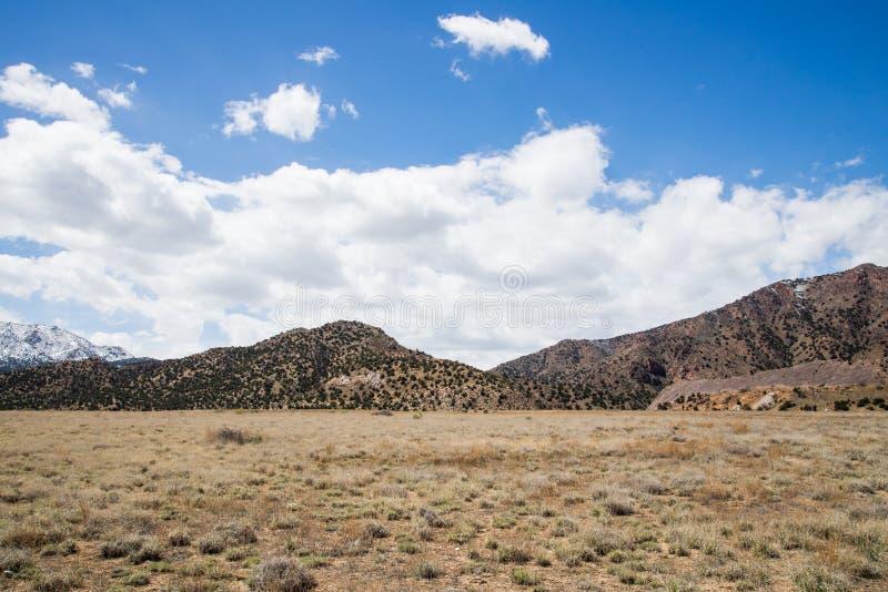 Cidade Colorado de Canon da garganta do templo do parque da ecologia foto de stock royalty free