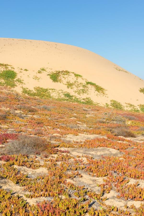 Cidade da areia calif?rnia foto de stock