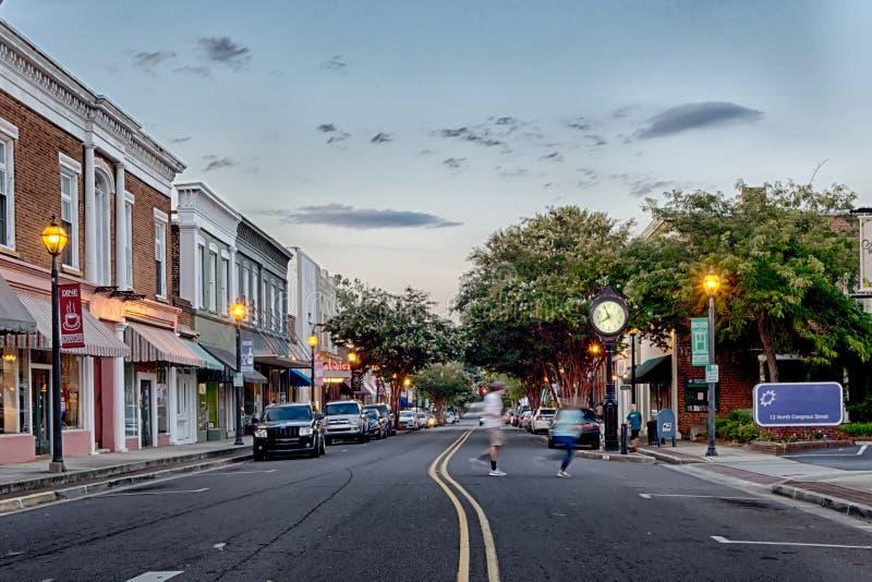 Cidade da rosa do branco de York South Carolina imagens de stock royalty free