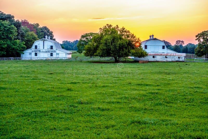 Cidade da rosa do branco de York South Carolina fotos de stock