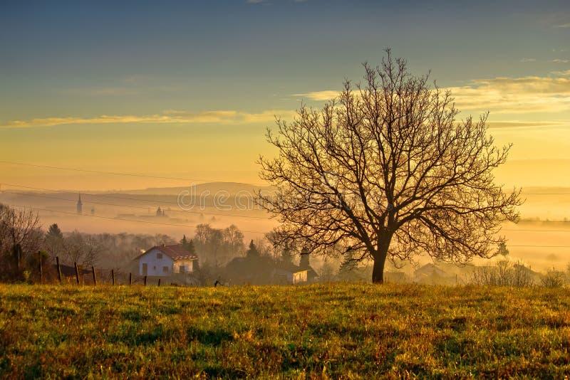 A cidade de Krizevci e a paisagem na manhã enevoam-se foto de stock royalty free