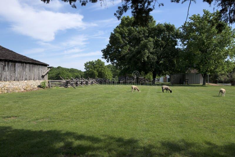 Cidade 1855 de Missouri fotos de stock