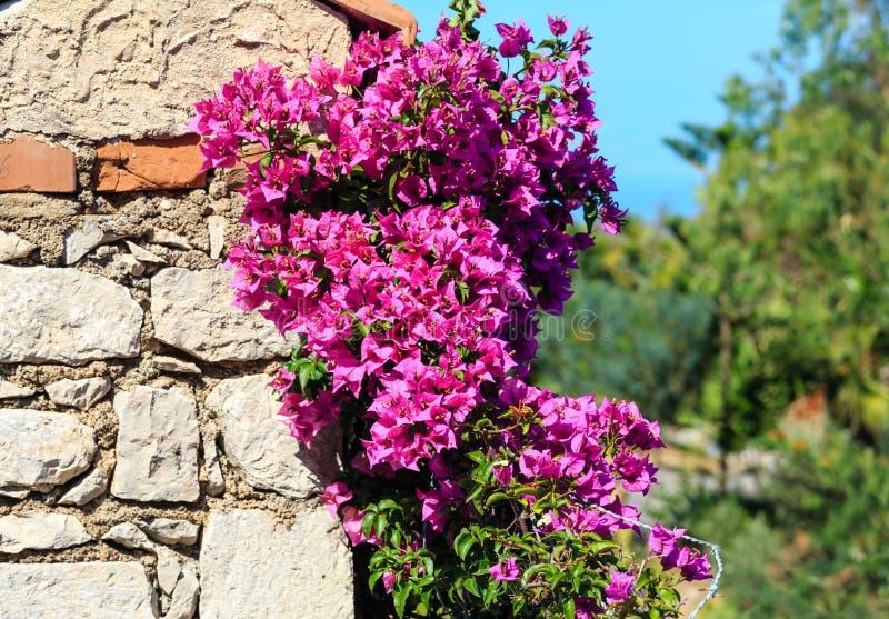 A cidade de Taormina floresce a cena, Sicília, Itália imagens de stock