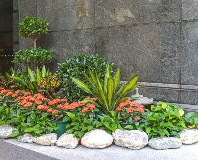 Cidade do Jardim de Oasis fotografia de stock royalty free