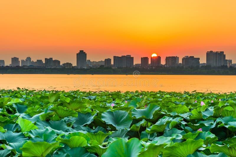 Cidade do lago e do Nanjin Xuanwu fotografia de stock royalty free