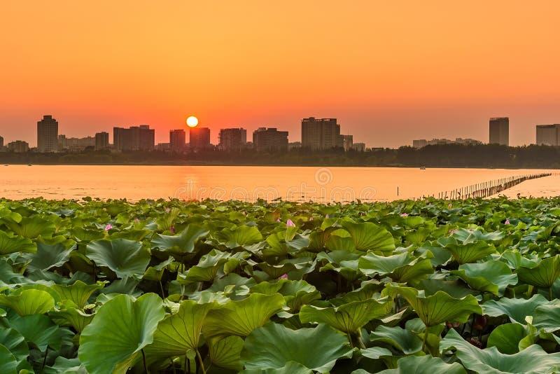 Cidade do lago e do Nanjin Xuanwu fotos de stock royalty free