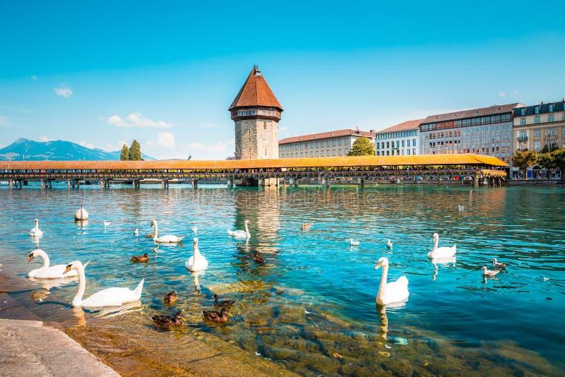 Cidade histórica de Lucerna com famosa Ponte Chapel, Suíça foto de stock royalty free