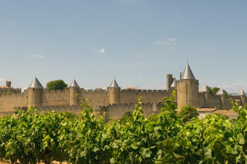Cidade medieval de Carcassonne e de vinhedos imagens de stock royalty free